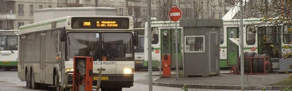 bus268